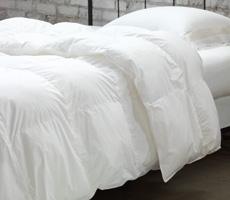 Verona Comforter